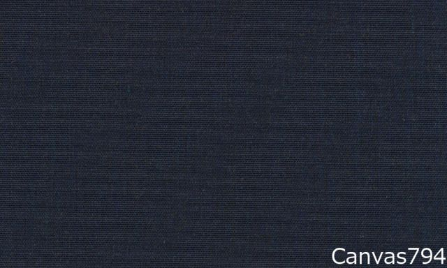 Canvas794