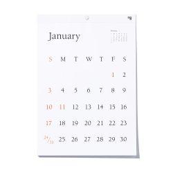 カレンダー 2021 / TYPEFACE Berkey 壁掛けカレンダー