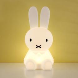 ミッフィーファーストライト / Miffy First Light