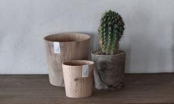 ティンバーポット / Timber Pot